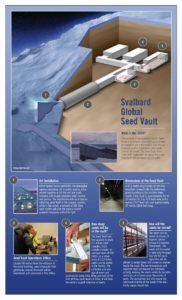 svalbard seed vault 182x300 ГМО храна (2): Убице и Гејтс у служби Монсанта