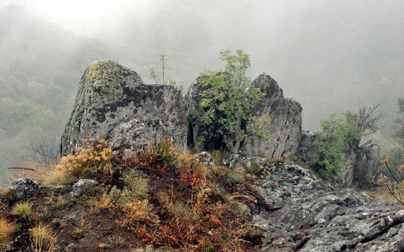Јелеч: Тајанствени град над облацима Kamene-palisade-jeleca
