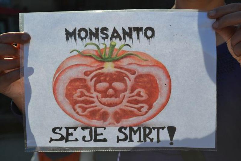 Monsanto-9