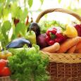organska-hrana-proizvodnja