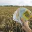 Poljoprivreda-novac