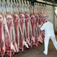 svinjsko_meso
