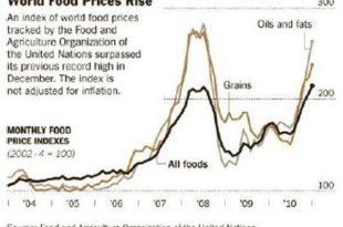За високе цене хране криви трговци и прерађивачи