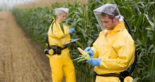 Рат за храну – рат против популације 8