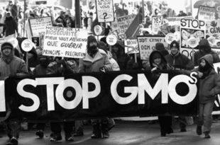 Донети закон о забрани ГМО у Србији