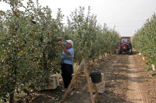 ПКС: Удвостручити аграрни буџет