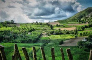 Село као избор и изазов