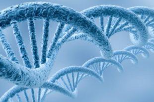 Вештачка ДНК уместо хард дискова