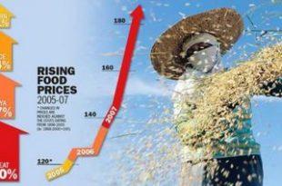 На јесен пораст цена прехрамбених производа
