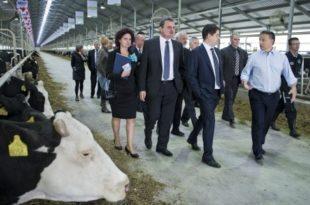 Орбан: Странцима забрањена куповина пољопривредног земљишта