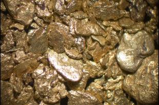 У Медвеђи откривено злато
