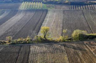 Нестало 414.000 хектара српских ораница?!