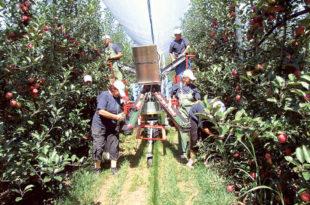 Суфицит аграра повећан на 1,12 милијарди долара