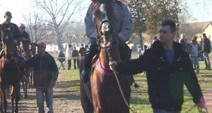 Новогодишње коњичке трке у Шапцу (видео) 6