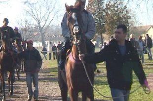 Новогодишње коњичке трке у Шапцу (видео)