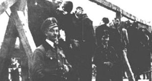 Напредни идиоти у Новом Саду подижу споменик нацистима која су убијали Србе у рацији