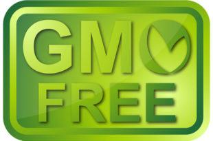 """И Србија у пројекту """"GMO free"""" соја"""