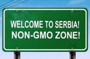 Референдум о ГМО!? Тотална и комплетна забрана ГМО у Србији!