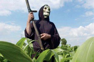 Јавно слушање о утицају ГМО