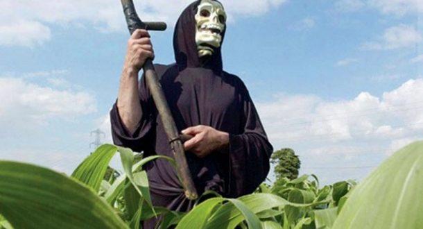 """""""Владари света"""" доносе ГМО семе: Србија на путу ка ЕУ мора да им отвори врата"""