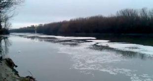 Масна сода у Тиси (видео) 12