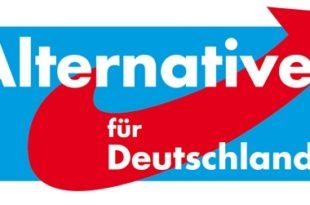 Нова анти-ЕУ партија формирана у Немачкој