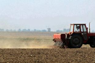 Догодине глад: Скромне и сетва и жетва