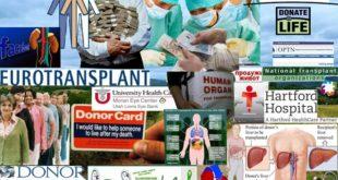 Трансплатација органа је за многе једини спас, а за неке друге извор огромних профита 6