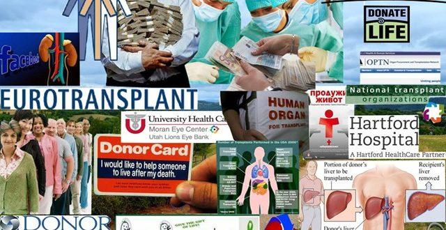 Трансплатација органа је за многе једини спас, а за неке друге извор огромних профита 1