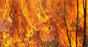 Црни врх: Пожар букти већ 12 дана 12