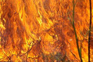 Црни врх: Пожар букти већ 12 дана