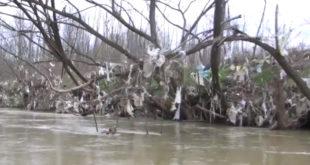 Јужна тужна Морава - плови само смеће (видео) 10