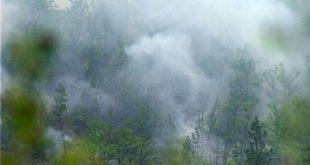 Пожар код Врања, и даље гори на Црном врху 11