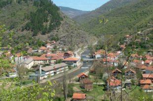 Општина Трговише дели пољопривредницима бесплатно боровнице, овце и козе