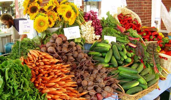 Органска производња хране 19.07.2013 (видео)