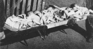 Болесници: Хашки суд по други пут убија Србе побијене у концетрационим логорима НДХ 10