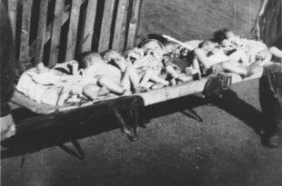 Болесници: Хашки суд по други пут убија Србе побијене у концетрационим логорима НДХ