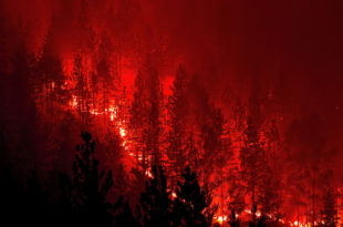 И даље се шири пожар на Мокрој Гори