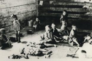 ЈАСТРЕБАРСКО – Једини концентрациони логор у НДХ који је формиран искључиво за децу