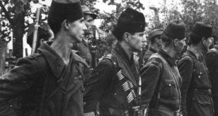 Муслимани четници у 2 свјетском рату (2) 6