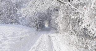 Европу очекује најоштрија зима за последњих сто година 11