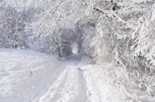 Србија на удару снажног циклона: Какав нас децембар очекује