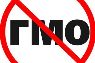 ГМО: Монсанто напушта ЕУ