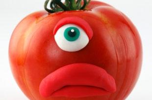 Србија уцењена од ЕУ да дозволи увоз ГМО