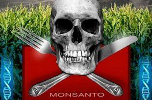 DUPONT и MONSANTO могу Украјину да претворе у своју лабораторију и плантажу