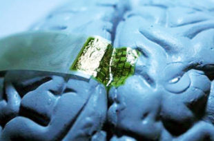 Пентагон и Обама улажу у нови пројект истраживања и манипулације мозгом 2