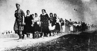 Професор др Гидео Грајф: У Јасеновцу убијено најмање 800.000 Срба и 40.000 Јевреја 14