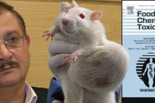 Монсанто и пацови, ГМО и истина о Сералинијевом истраживању