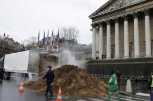 Француз истоварио 20 тона коњске балеге пред парламент