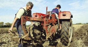 Огроман пад у броју запослених у пољопривреди
